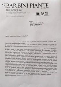 La risposta dei Barbini all'Fc Grosseto sull'ingiallimento del manto erboso dello Zecchini - pagina 1
