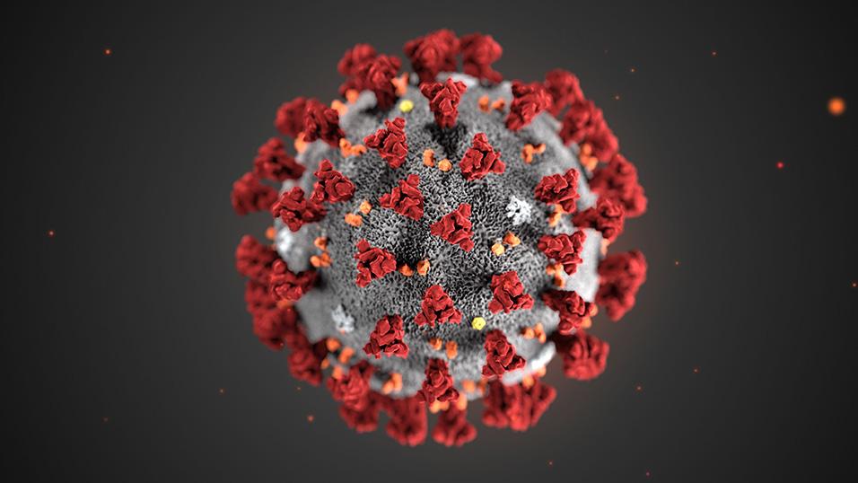 Coronavirus, nuovo contagio a Valfabbrica: otto casi positivi, tre ricoverati in ospedale