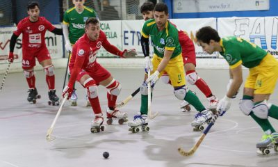 hockey-pista-serie-A1-partita-circolo-pattinatori-grosseto-Edilfox-Sandrigo